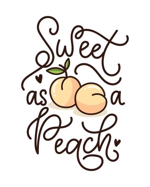illustrazioni stock, clip art, cartoni animati e icone di tendenza di sweet as a peach lettering quote with cute peaches. cute hand drawn calligraphy with fruits. - pesche bambino