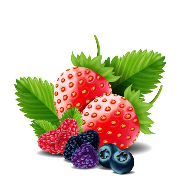 bildbanksillustrationer, clip art samt tecknat material och ikoner med söta bär blanda isolerade på vit bakgrund. mogna hallon, jordgubbar och blåbär. vektorillustration. - bär