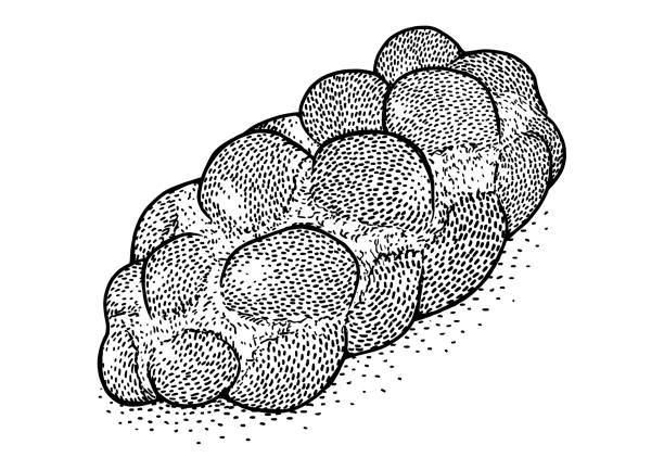 sweet geflochtene brotlaib illustration, zeichnung, gravur, tinte, strichzeichnungen, vektor - brotzopf stock-grafiken, -clipart, -cartoons und -symbole