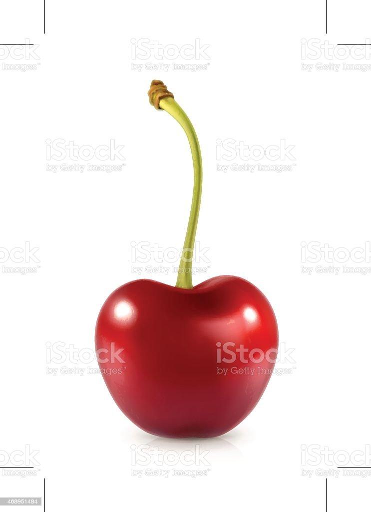 Sweet cherry, vector icon vector art illustration