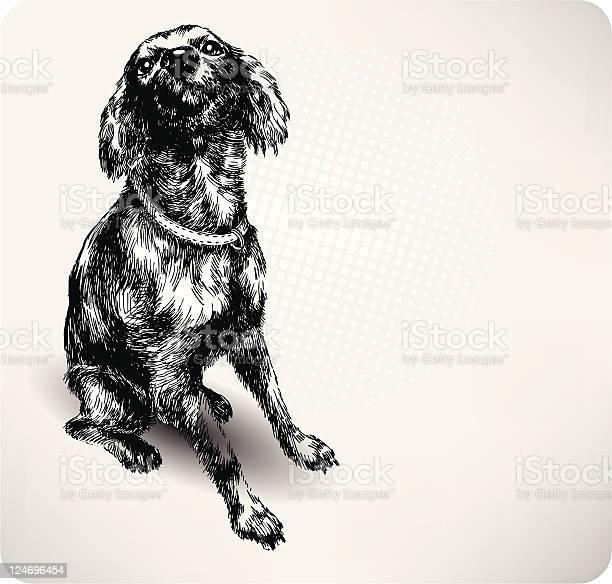 Sweet dog hand drawing vector vector id124696454?b=1&k=6&m=124696454&s=612x612&h=elfbp iqf10efzerhssx5fhaftf8ry5q6dfdvg 17s8=