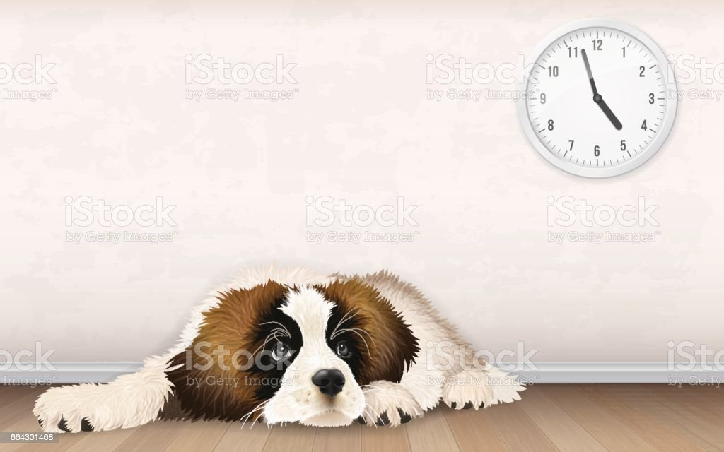 sweet fluffy puppy is waiting vector art illustration