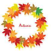 Sweet gum leaves (LIquidambar styraciflua). The circle of leaf are in the autumn. It is vector illustration for frame ans card. It vector is draw and no trace or copy image.
