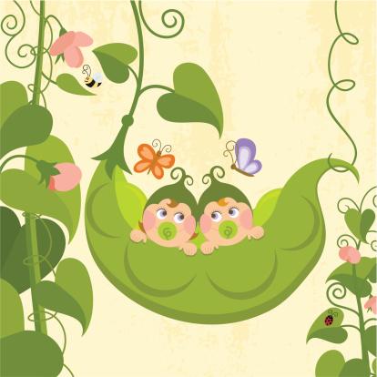 Sweet pea (series)