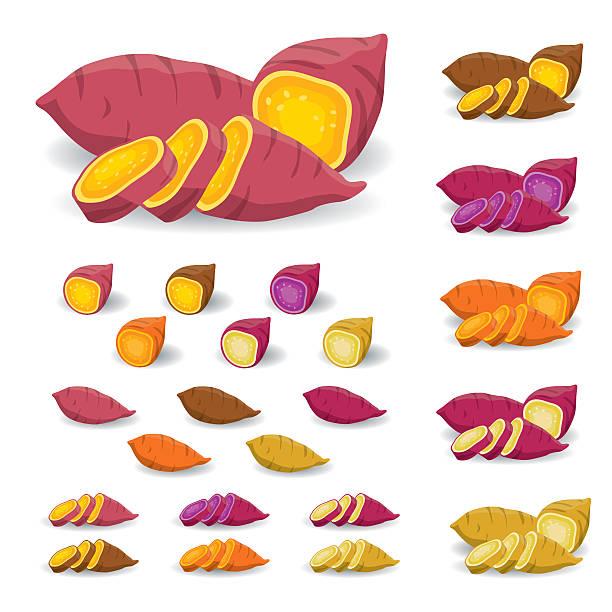 słodki ziemniak wektor - słodki ziemniak stock illustrations