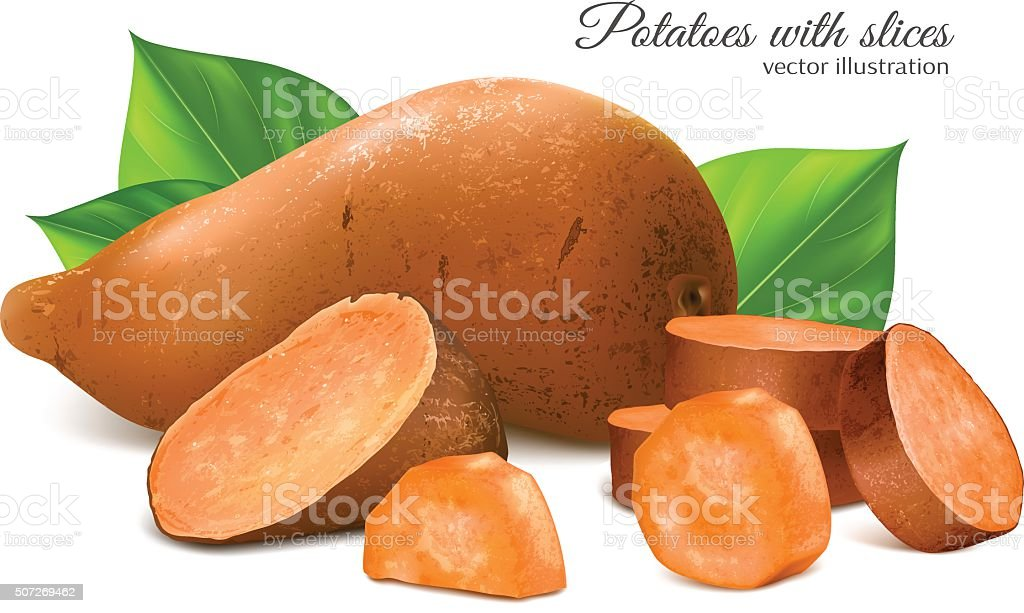 Sweet potato with slices and leaves vector art illustration