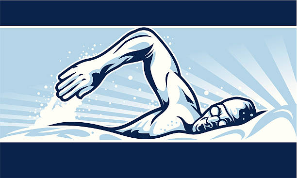 Swimmer Banner vector art illustration