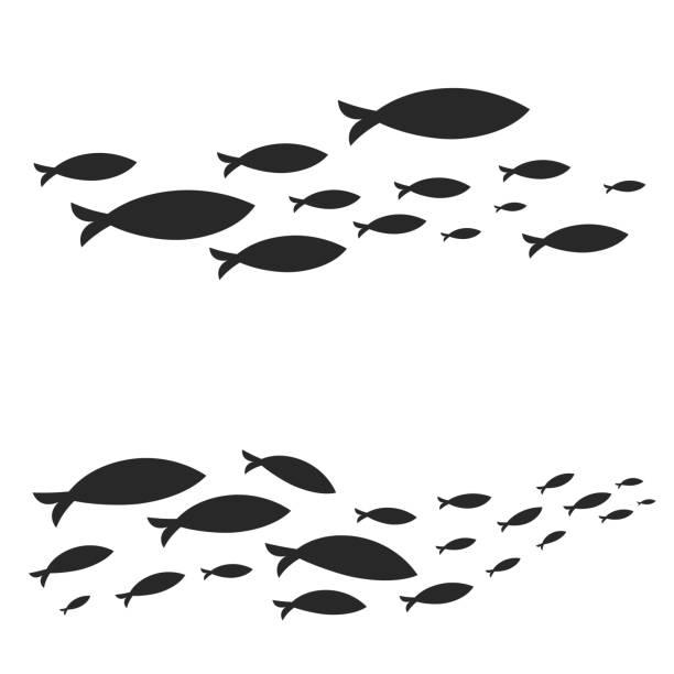 illustrazioni stock, clip art, cartoni animati e icone di tendenza di swimming cluster of graphic fish - nuoto mare