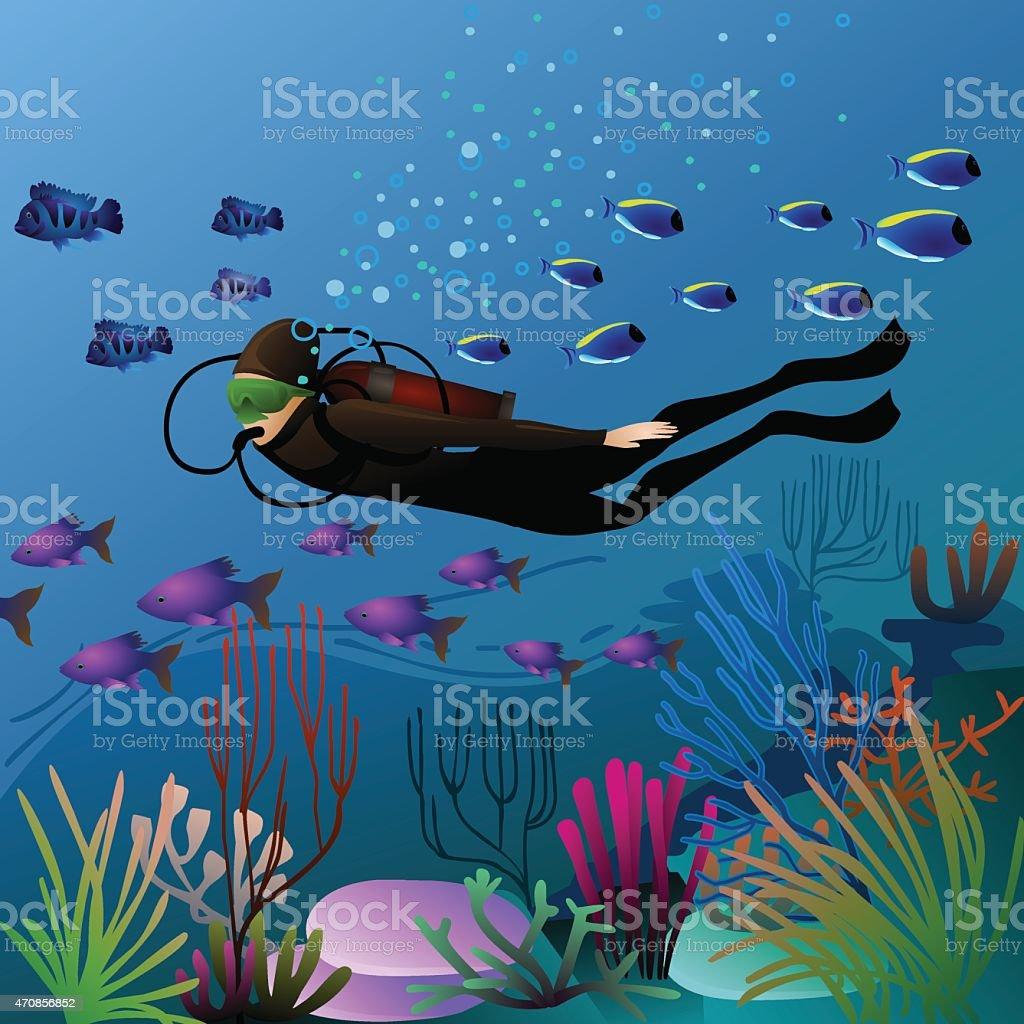swimming diver vector art illustration