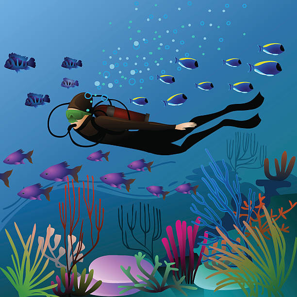 swimming diver vector art illustration