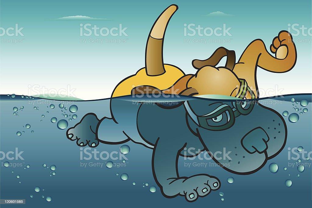 Swimming Dog royalty-free stock vector art