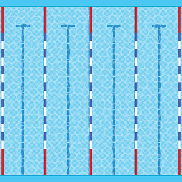 Best Swimming Lane Marker Illustrations Royalty Free