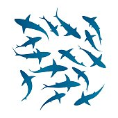 Vector silhouettes of fifteen swimming sharks.