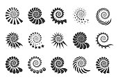 Swirl design element. Spiral icon. Set twisting lines isolated on white background. Seashells vector.