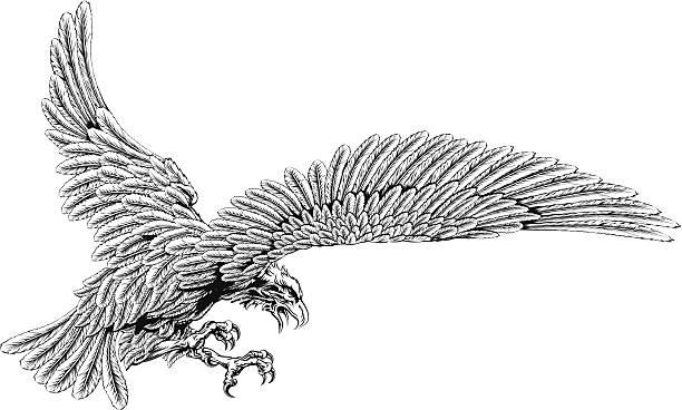 Con los eagle - ilustración de arte vectorial