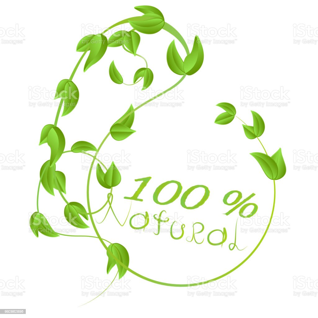 Symbol 100 Natural Product With Leaves Branches And Stems With Green