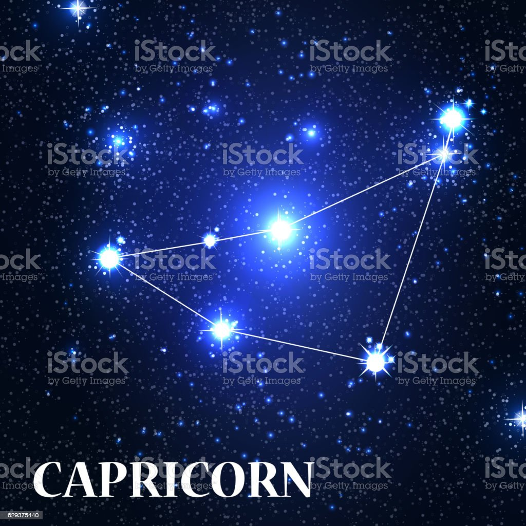 Symbol Capricorn Zodiac Sign Vector Illustration Stock Vector Art