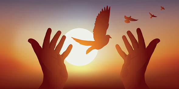 Symbol of peace with clasped hands releasing a bird's flight at sunset.