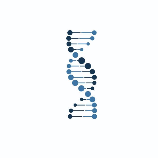 DNA symbol strand Isolated on white background DNA symbol strand Isolated on white background dna test stock illustrations