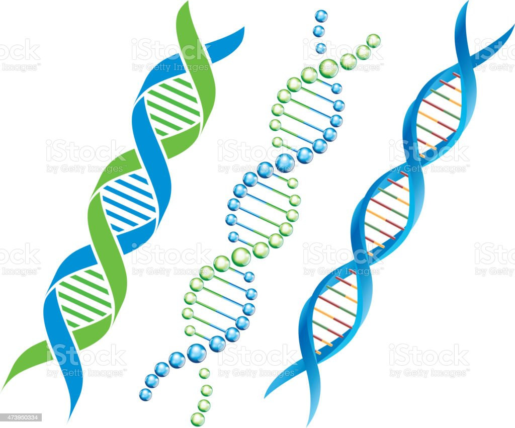 DNA symbol vector art illustration
