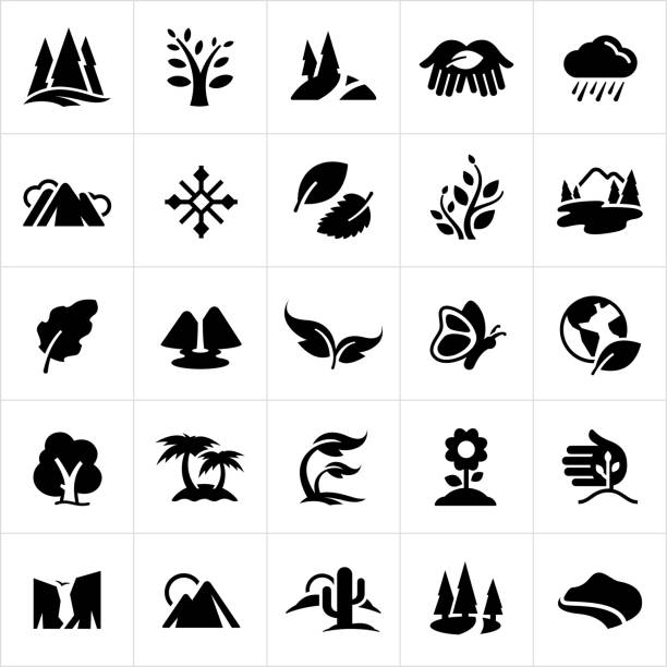 Symbols of Nature Icons A set of common nature symbols. The icons include trees, mountains, leaves, rain, snow flake, plants, lakes, waterfall, butterfly, planet earth, palm trees, growth, flower, sprout, cliffs, canyons, sun, cactus and coast line to name a few. cliff stock illustrations