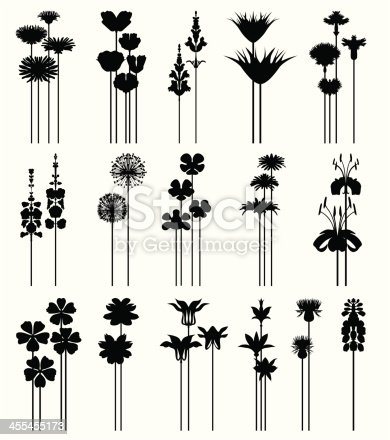 Set of decorative symmetrical flowers