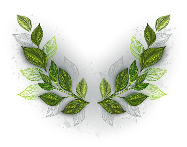 illustrazioni stock, clip art, cartoni animati e icone di tendenza di symmetrical pattern with tea leaves - camellia sinensis