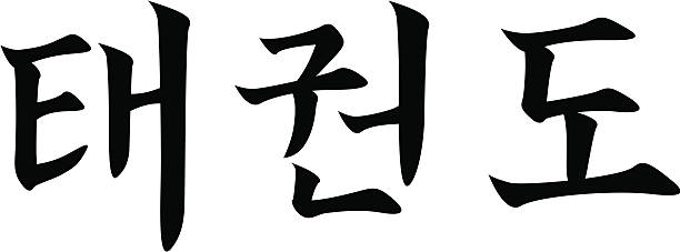 taekwondo - korean character (hangul) - taekwondo stock illustrations, clip art, cartoons, & icons