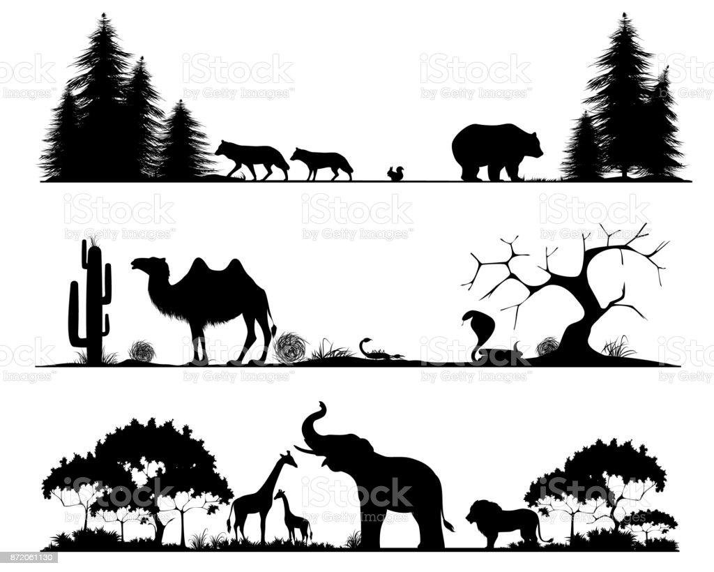 Taiga, desert and savannah vector art illustration
