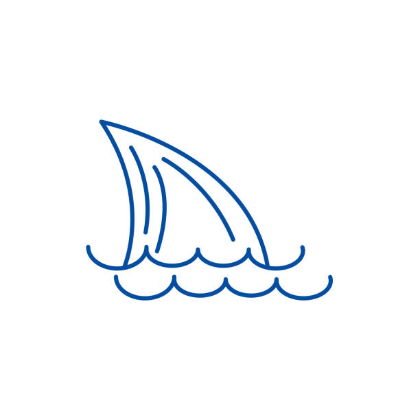Tail of a shark,sea line icon concept. Tail of a shark,sea flat  vector symbol, sign, outline illustration. Tail of a shark,sea line concept icon. Tail of a shark,sea flat  vector website sign, outline symbol, illustration. animal fin stock illustrations