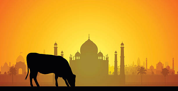 Taj Mahal, India Taj Mahal with cow in India. agra jama masjid mosque stock illustrations