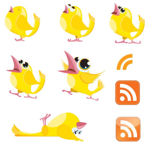 Talking Canaries and RSS symbol vector art illustration