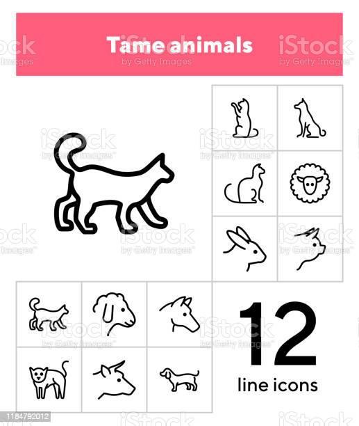 Tame animals line icon set vector id1184792012?b=1&k=6&m=1184792012&s=612x612&h=khxg42snlauzmgk9ejzdzgwlbulc7qe  3x9yzf65nw=