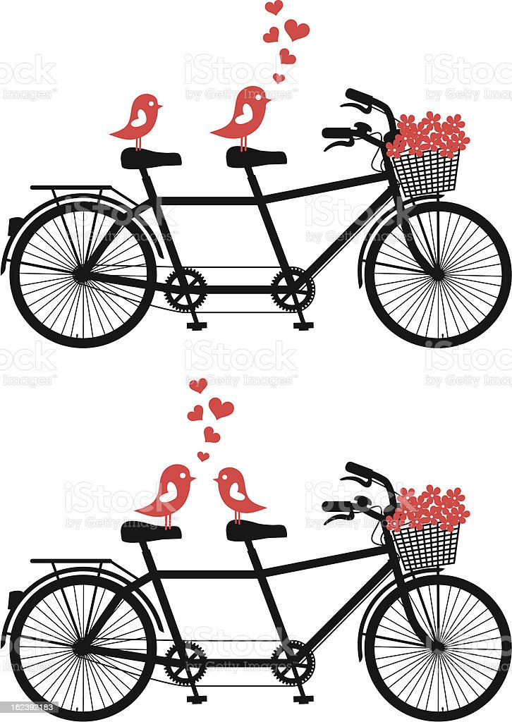 tandem bicycle with love birds, vector royalty-free tandem bicycle with love birds vector stock vector art & more images of animal