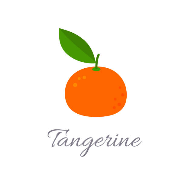 Tangerine icon with title Vector illustration of tangerine icon in flat style with title, isolated on white background tangerine stock illustrations