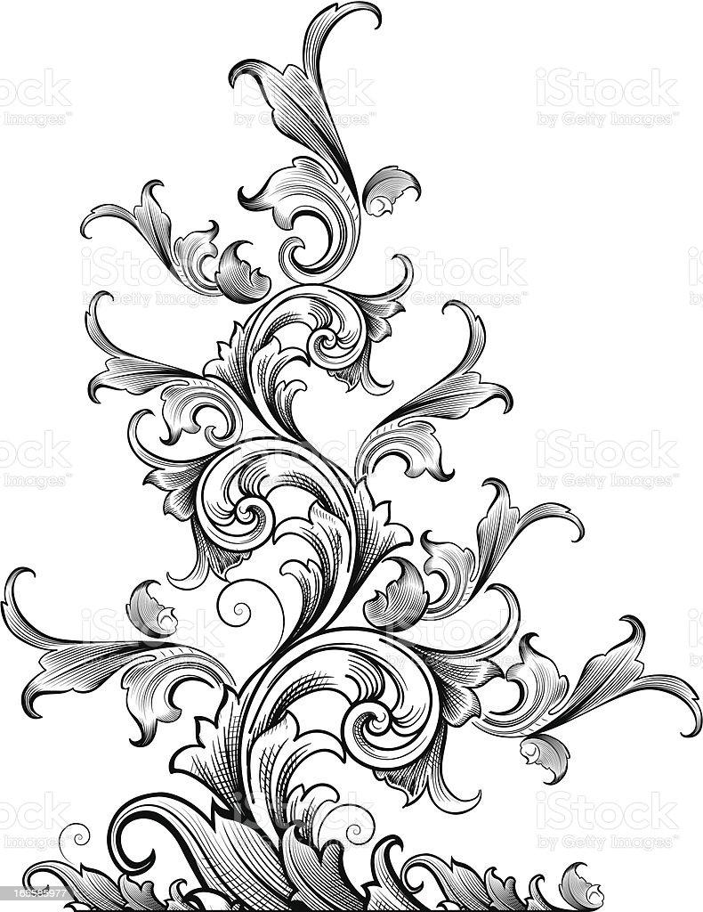 Tapering Acanthus vector art illustration