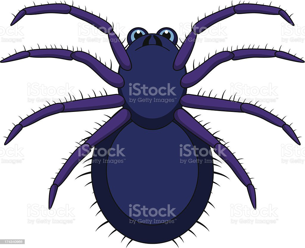 Tarantula Cartoon royalty-free stock vector art