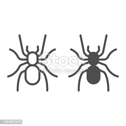 Tarantula line and solid icon, Insects concept, scary big spider sign on white background, dangerous tarantula icon in outline style for mobile concept and web design. Vector graphics