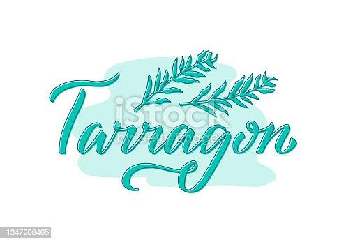 istock Tarragon green creative word on pastel background 1347208465