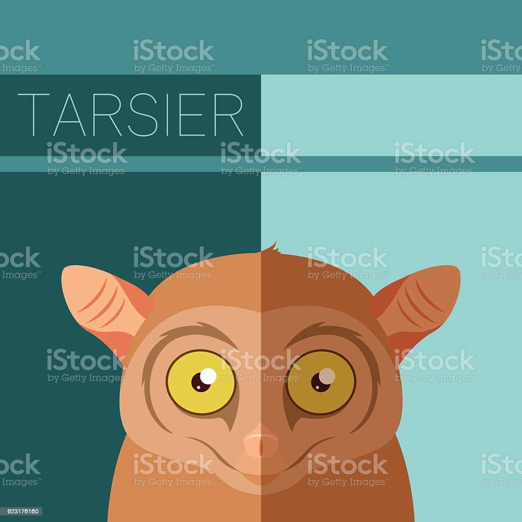 Tarsier flat postcard vector art illustration