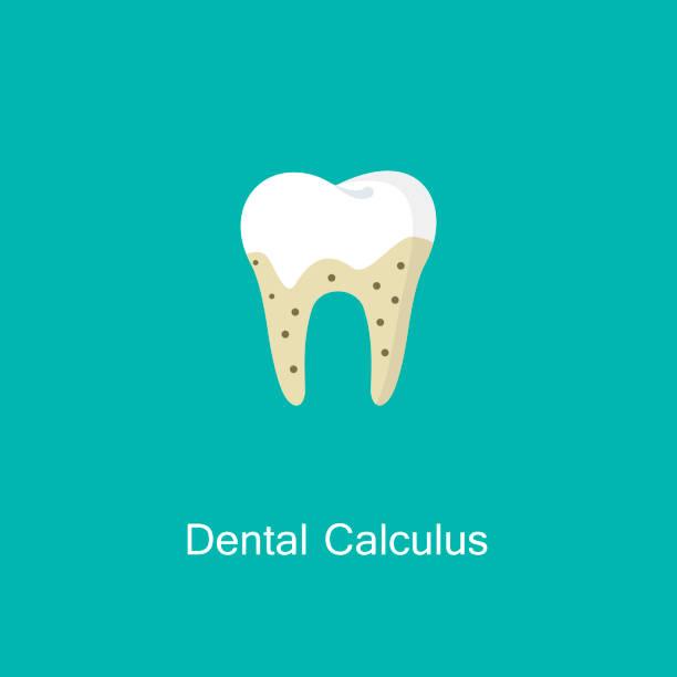 bildbanksillustrationer, clip art samt tecknat material och ikoner med tandsten eller kalkyl tänder illustration vektor ikonen. - tandsten