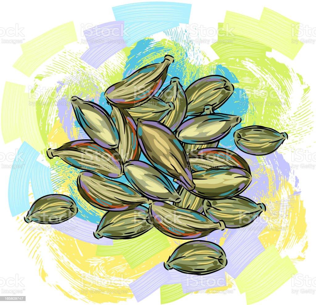 Tasty Cardmom/elachi vector art illustration