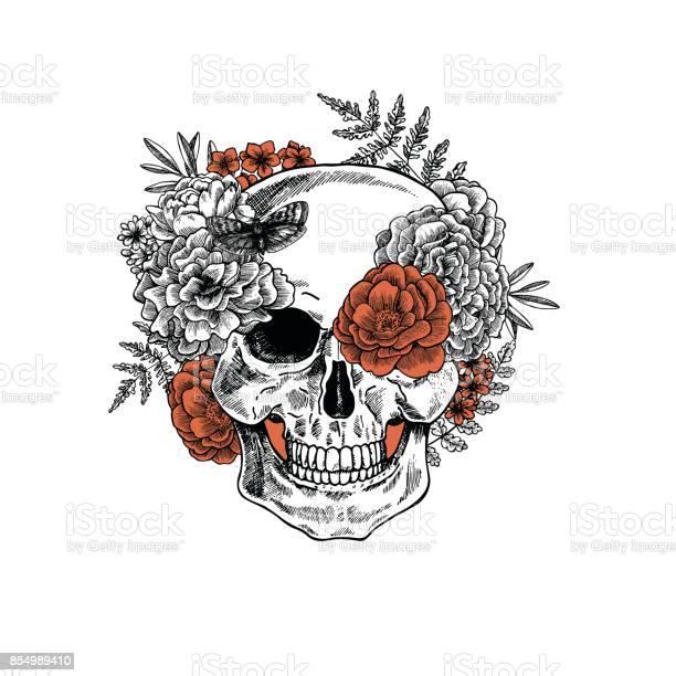 Tattoo anatomy vintage floral skull illustration floral skeleton vector id854989410?b=1&k=6&m=854989410&s=612x612&h=dvfbtwakvzngnqvsrzvlnrw7rgd0owbufrgp2amj gm=