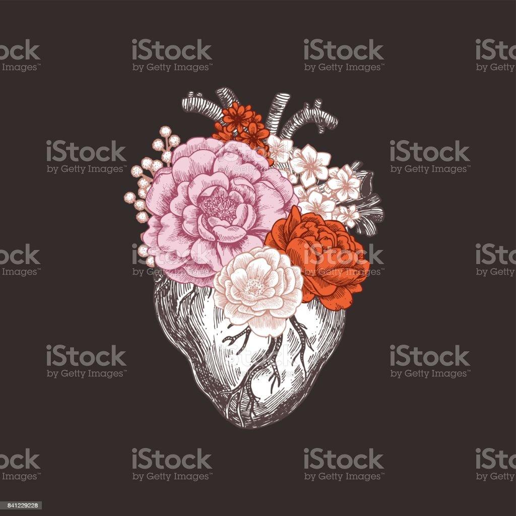 Tatuaje vintage ilustración de anatomía. Floral corazón anatómico. Ilustración de vector - ilustración de arte vectorial