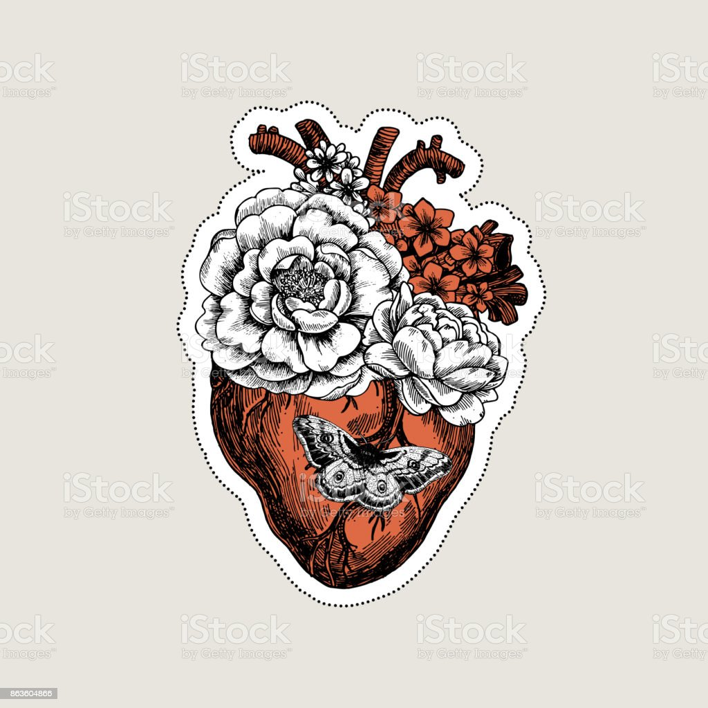 Tattoo Anatomy Vintage Illustration Floral Anatomical Heart Vector
