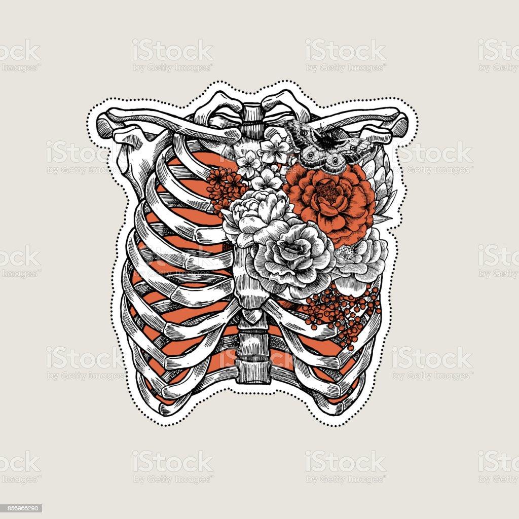 Tatuaje vintage ilustración de anatomía. Esqueleto del tórax de rosas. Ilustración de vector - ilustración de arte vectorial