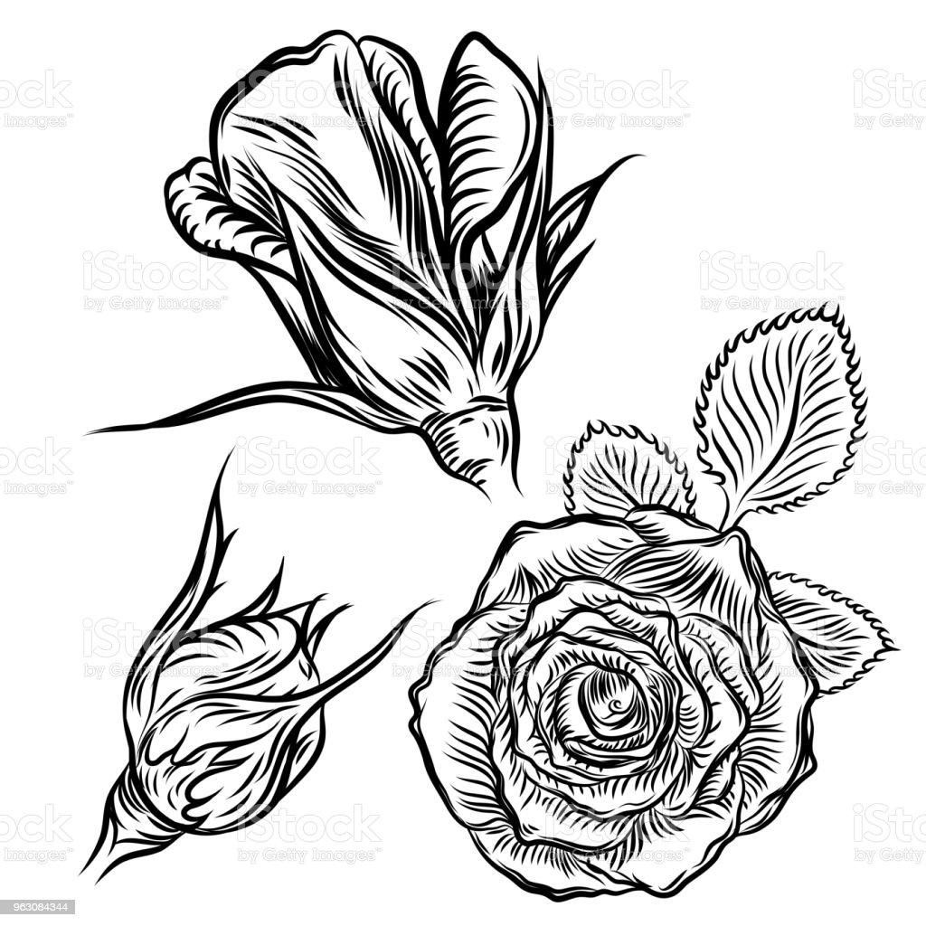 Concept De Tatouage Rose Fleurs Ensemble Tatouage Idee Collection