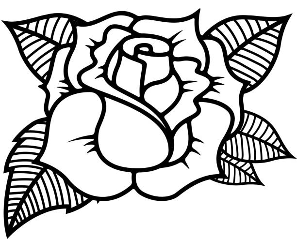 Best Rose Tattoo Stencil Drawings Illustrations, Royalty-Free Vector Graphics & Clip Art - iStock