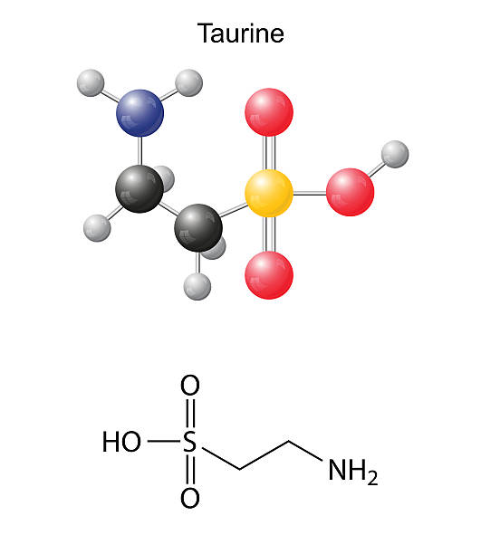 Taurine (tau) - chemical structural formula and models Taurine (tau) - chemical structural formula and models, amino acid, in vacuo, zwitterion, 2D and 3D illustration, balls and sticks, isolated on white background, vector, eps10 amino acid stock illustrations