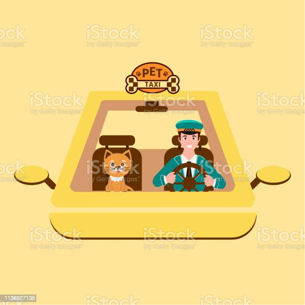 Taxi driver and cat on front seat pet travel concept vector id1136527135?b=1&k=6&m=1136527135&s=612x612&h=6sl8wotft6px9ru6nxo1punzjubma hxqu8mu tbcp0=
